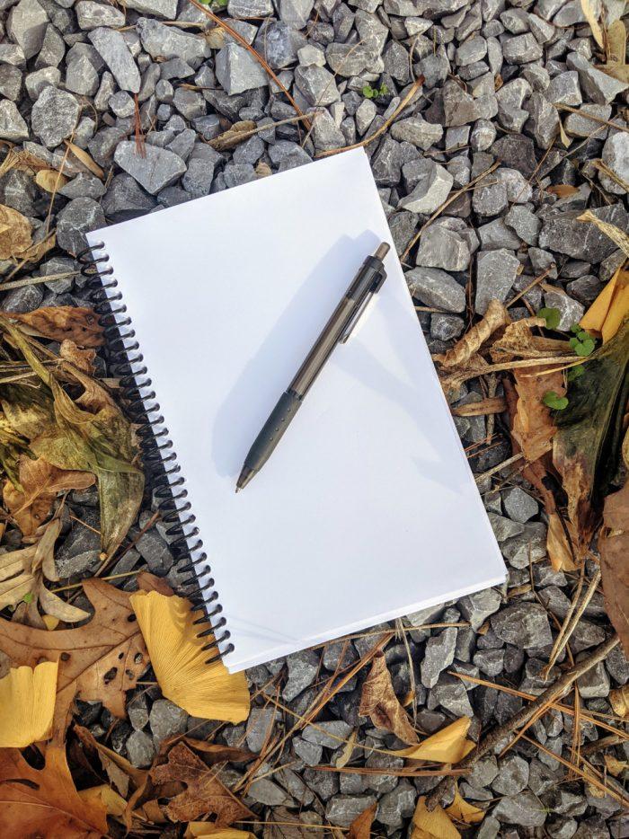 Blank Journal Pen